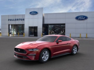 2019 Mustang in Somerville, New Jersey | Lease Finance near